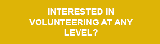 Interesting in Volunteering at any level?