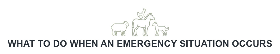 What to do when an emergency situation occurs