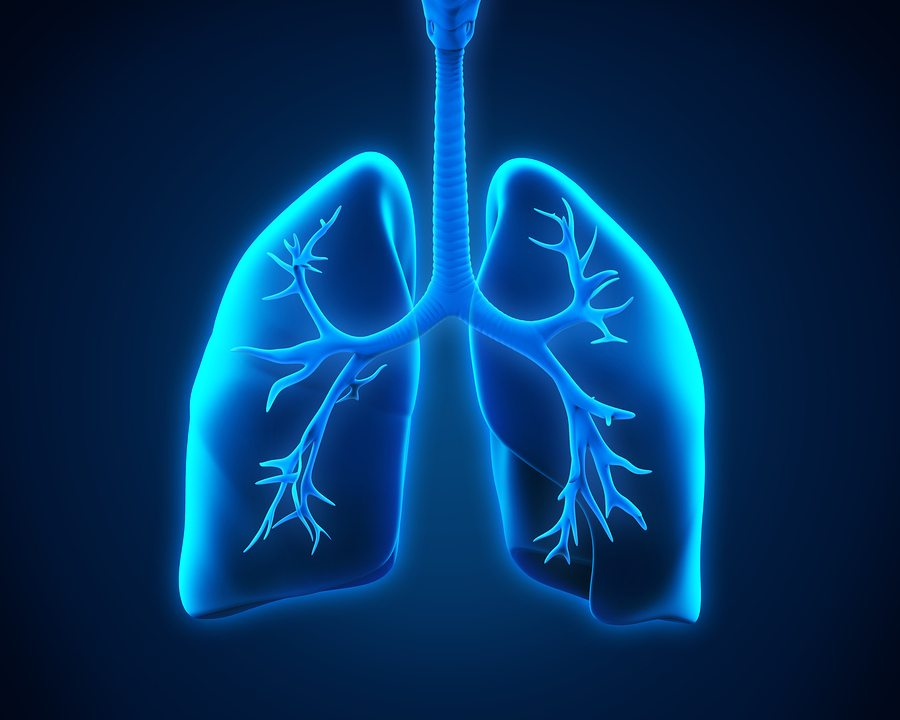 Homecare in Indian AK: COPD - Chest X-Rays For Your Senior