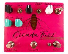 Cicada Fuzz