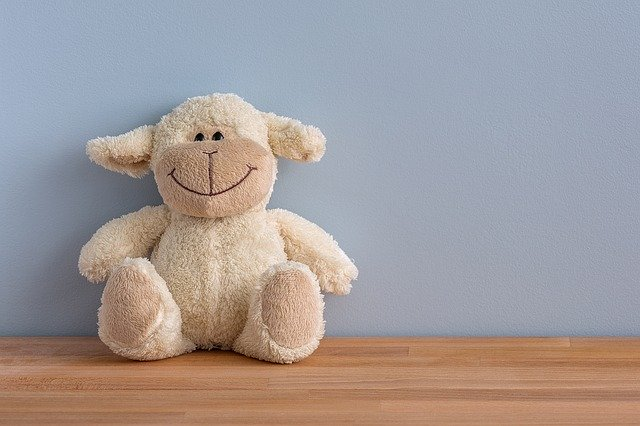 Clean Stuffed Toys Without Using Water!