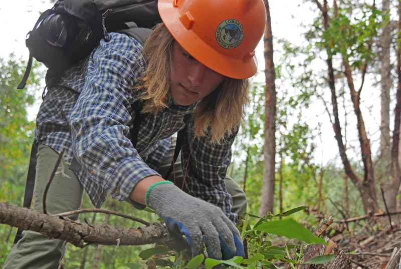 Forest Conservation Technician