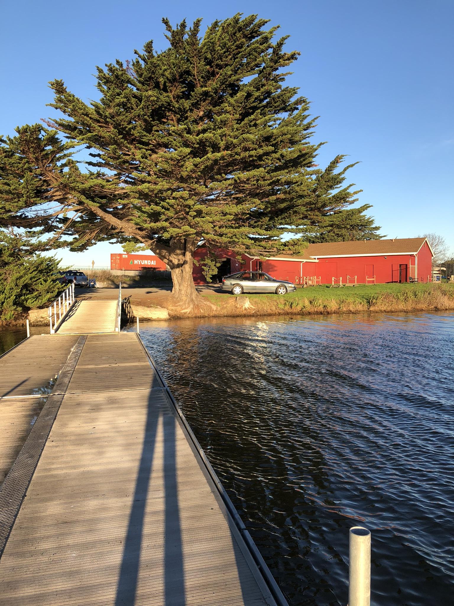 berkeley_rowing_aquatic_park_dock