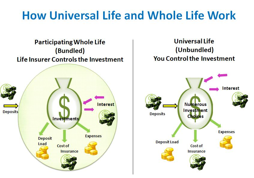 Whole Life Universal Life