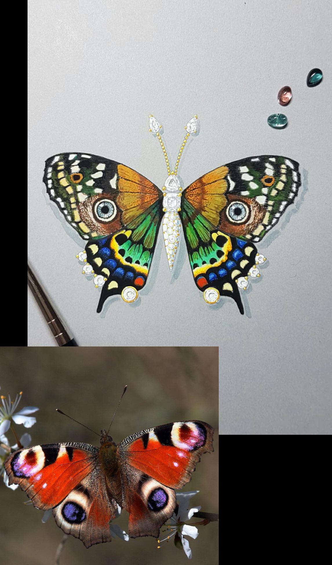 Karpov Paris-Butterfly-gouache painting
