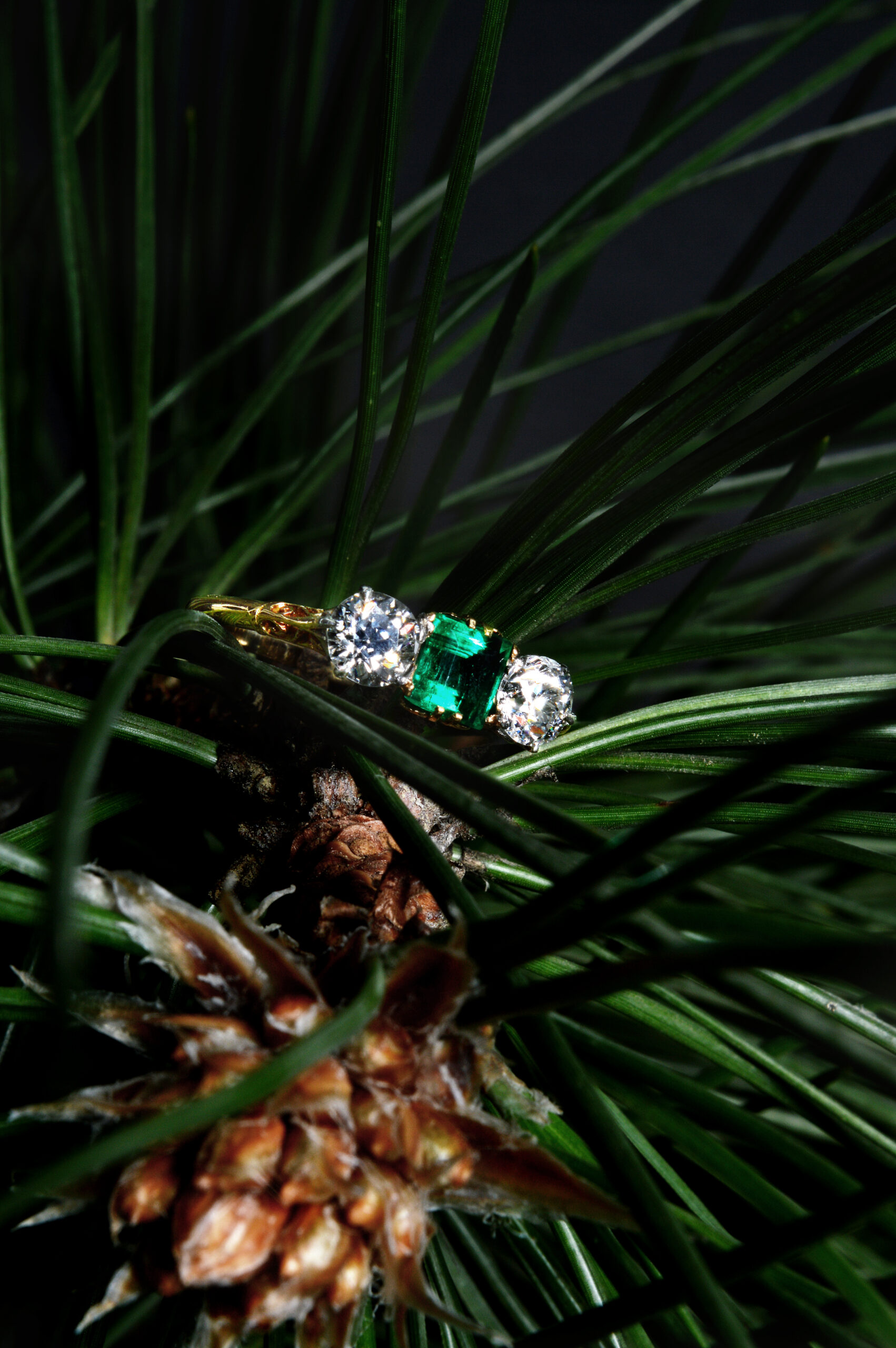 Emerald Ring Portrait