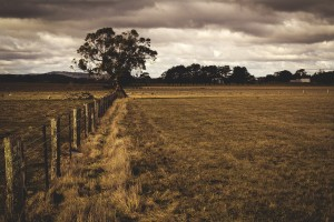 countryside-918722_1280