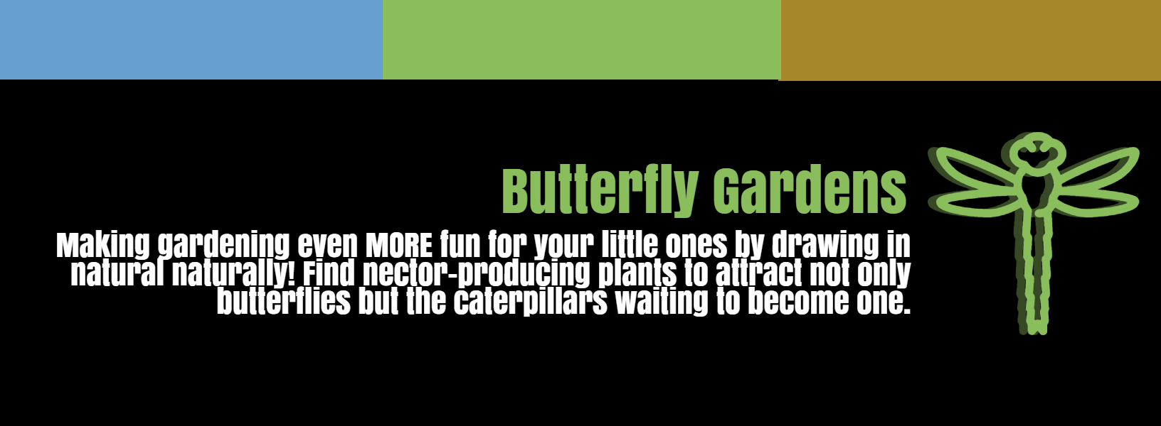 Butterfly Gardens For Gardening With Kids