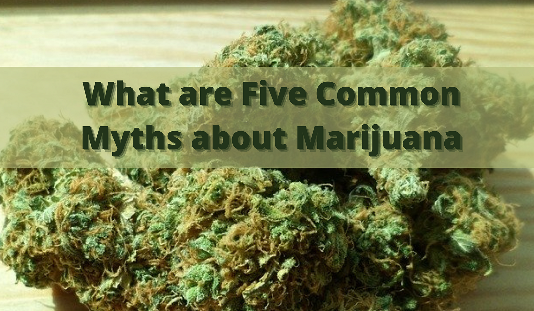 What are Five Common Myths about Marijuana