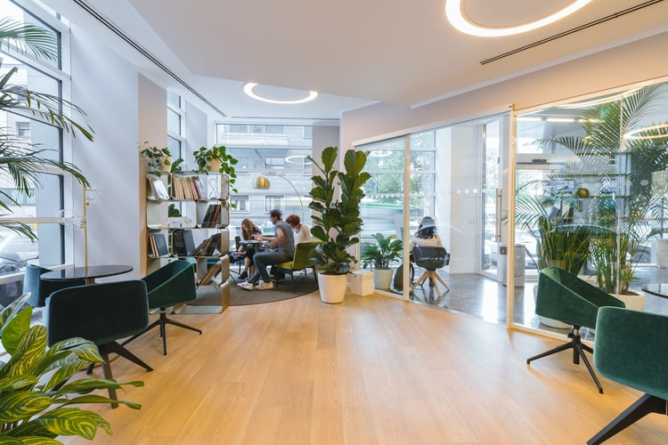 How to Create Eco-Conscious Workplace Design