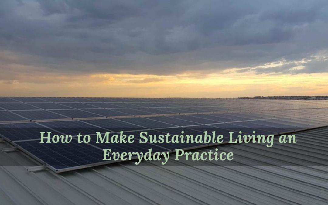 How to Make Sustainable Living an Everyday Practice