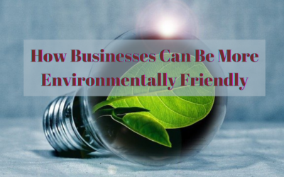 How Businesses Can Be More Environmentally Friendly