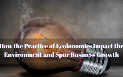 How the Practice of Ecolonomics Impact the Environment and Spur Business Growth