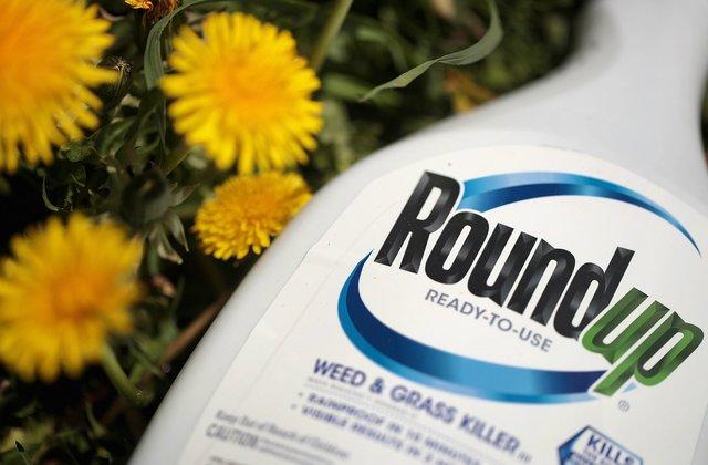 Roundup Weedkiller