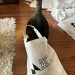 """Pita """"helping"""" to pack hygiene kits for Simply the Basics"""