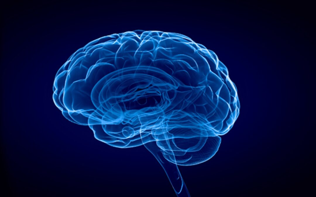 What You Need to Know About Pain and the Brain