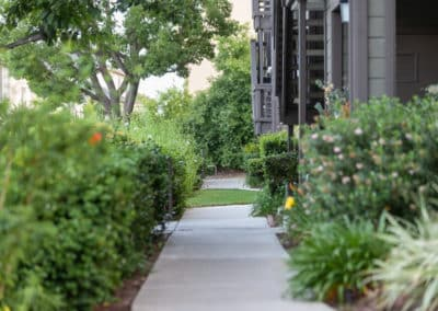 Landscaping along the sidewalk at Crestwood Apartment Homes