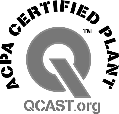 Black and white logo that has a big Q