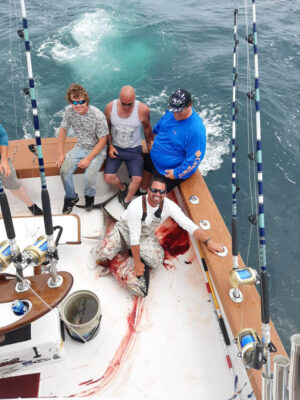 Tuna fishing in OCMD