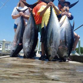 Oregon Inlet tuna fishing