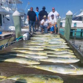 Dolphinfish Charter Fishing