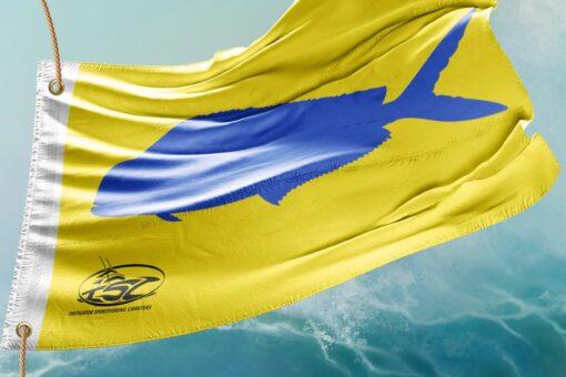 Mahi-mahi sport fishing charters in the Outer Banks, NC