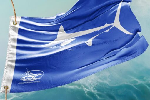 White marlin sport fishing charters in the Outer Banks, NC