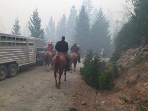 Klamath National Forest California 9416