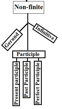 Participle has three sub participles, Present, past, and perfect participle.
