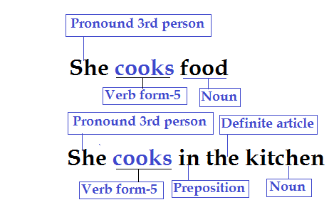 Transitive and intransitive verb.