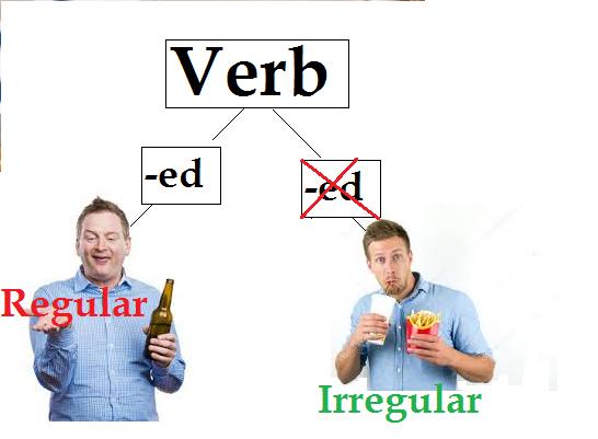 Regular and irregular verb.