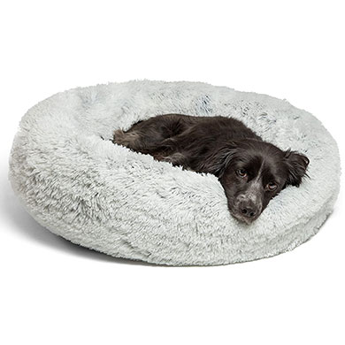 comfortable bed for your goldendoodle