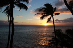 hawaii-gold