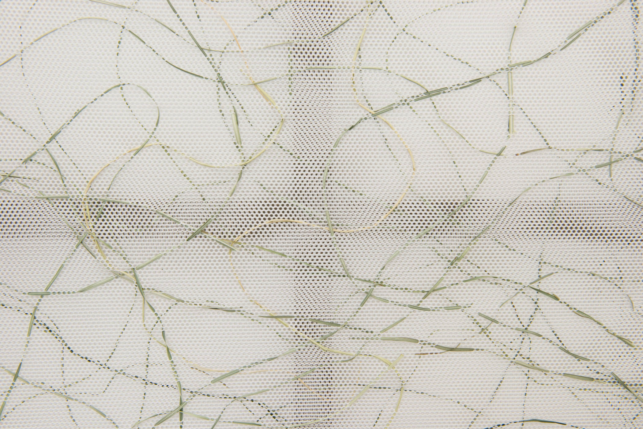 Stephen Nachtigall Net Grama (Detail), 2015 Mesh textile, grass, and composite wood