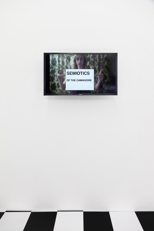 "Ann Hirsch Semiotics of the Camwhore, 2014/2015 Digital video, custom USB 6'43"""