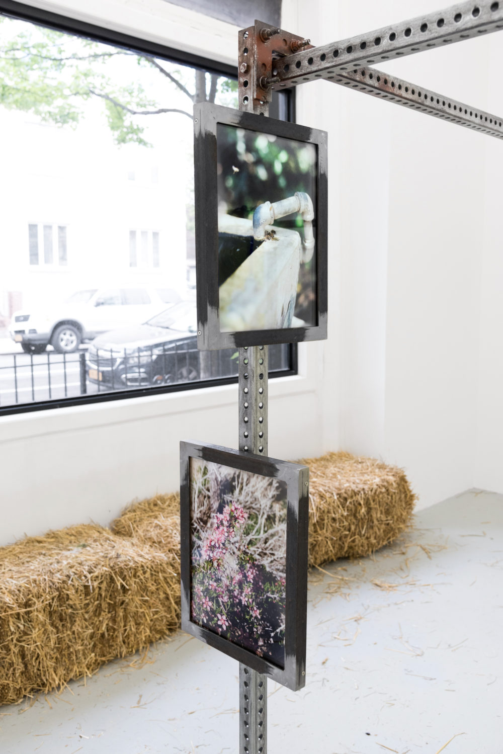 Dusty Contessa Finds A Homestead, 2016 Installation view