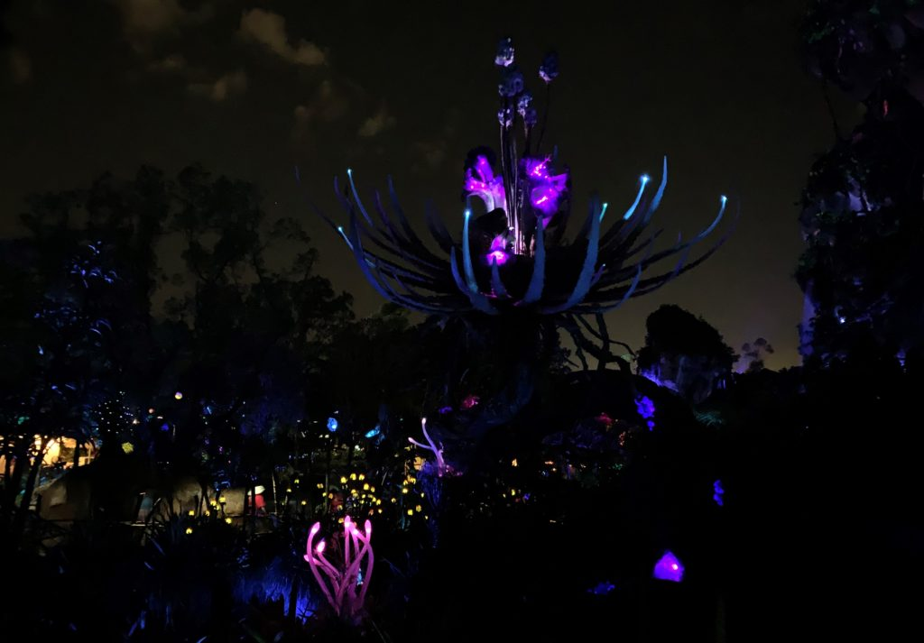 Pandora at Night in Animal Kingdom