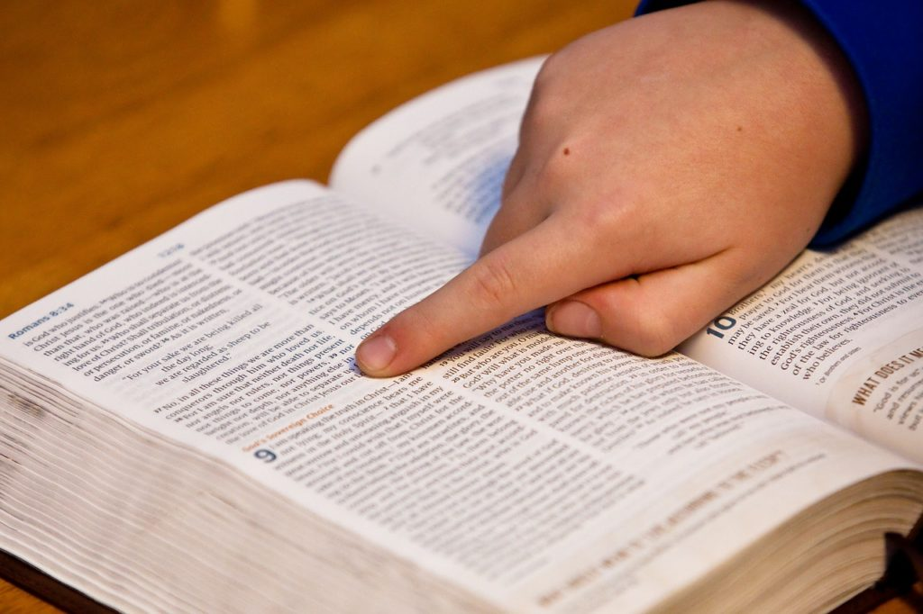 Cool Facts about the Bible!