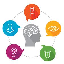 sensory-profile-image-1-1.png