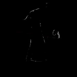 Archie T Comma