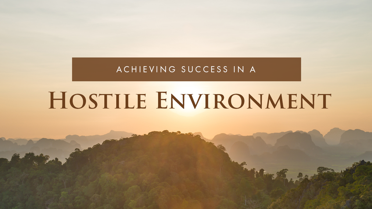 Achieving Success In A Hostile Environment