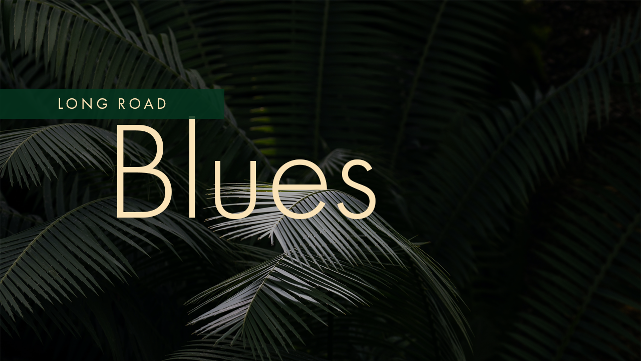 Long Road Blues