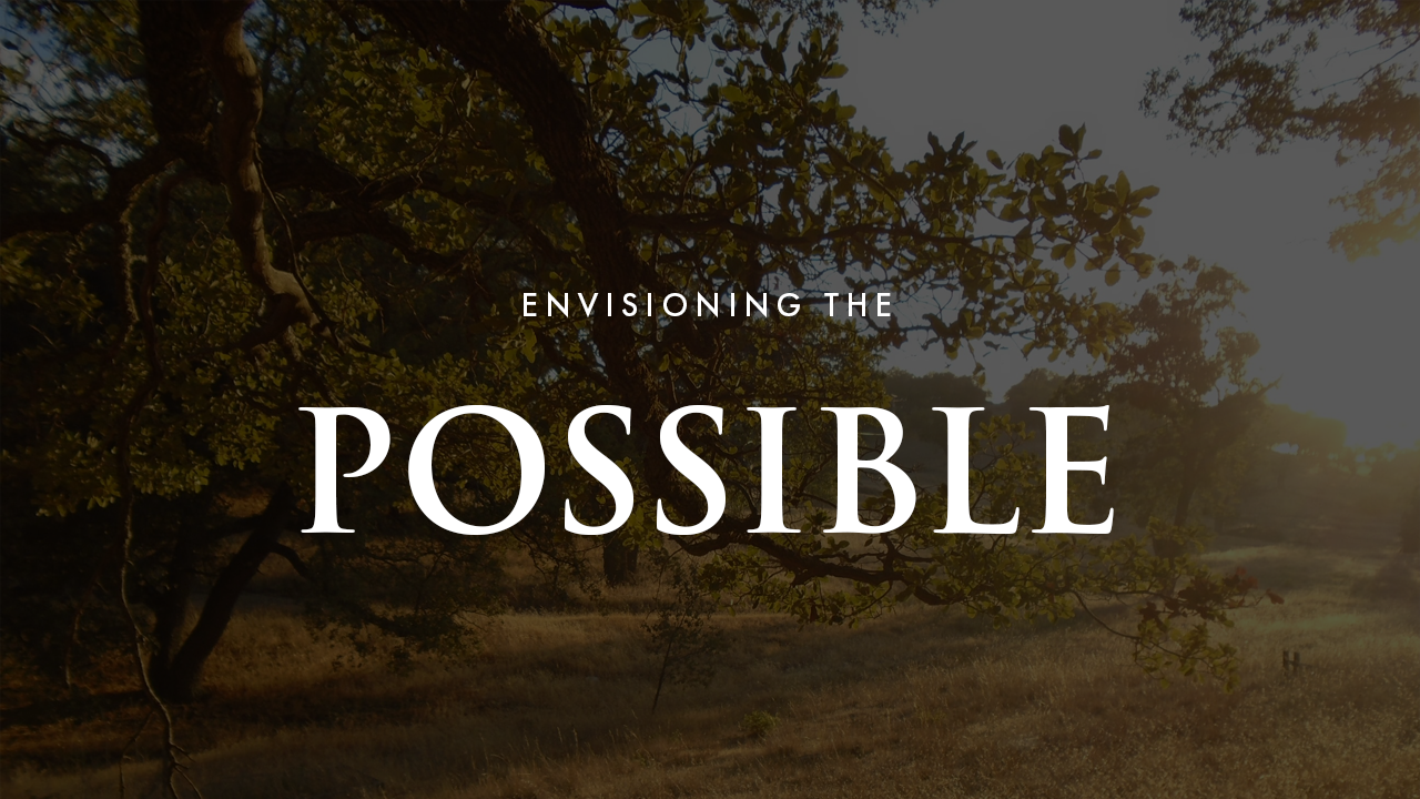 Envisioning The Possible