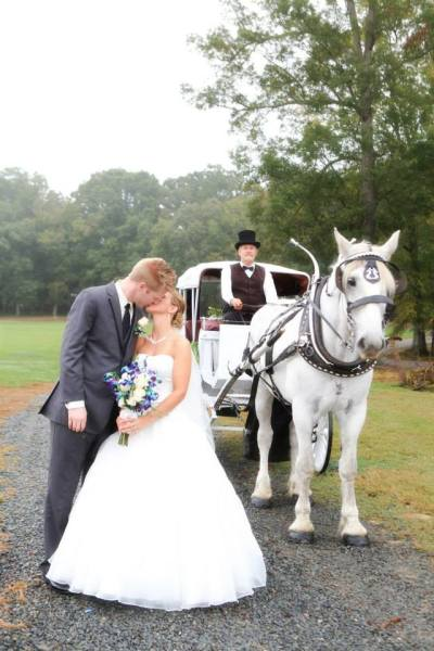 Horse and Carriage for Bride and Groom