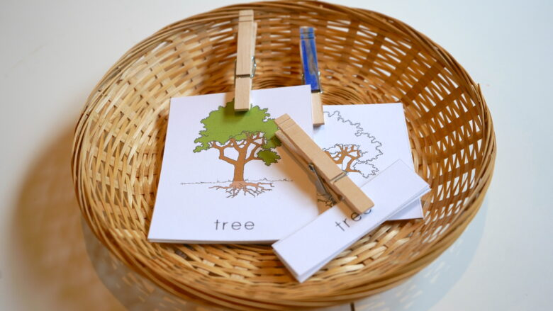 Fall Montessori Inspired Activities for Toddlers and Preschoolers