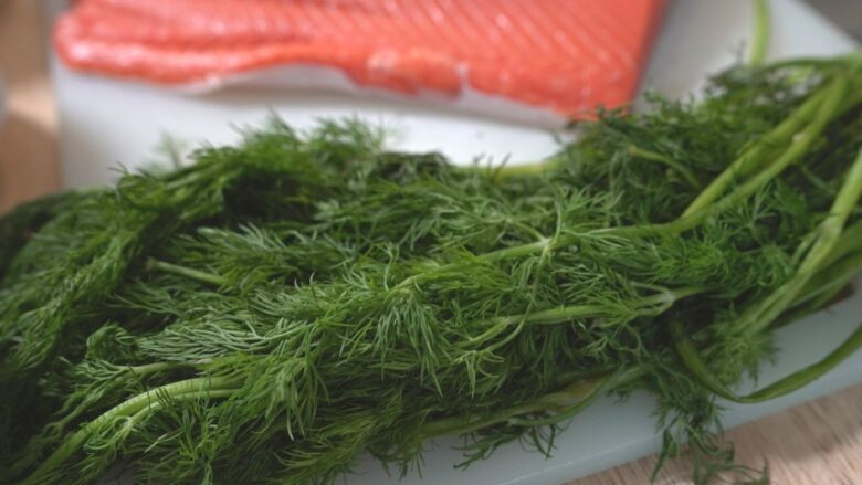 Dill and Salmon