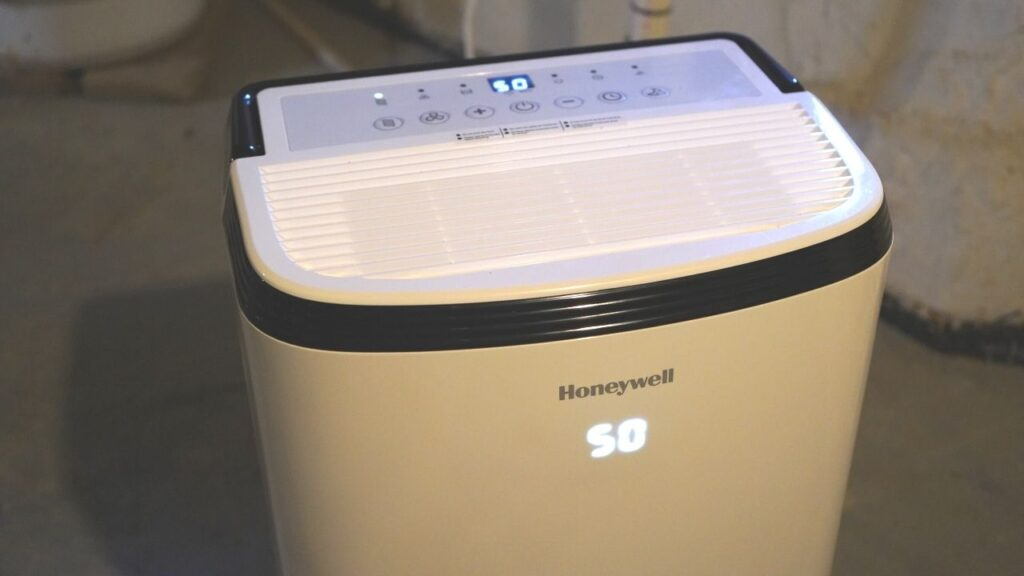 Keep Bugs Away Naturally Dehumidifier