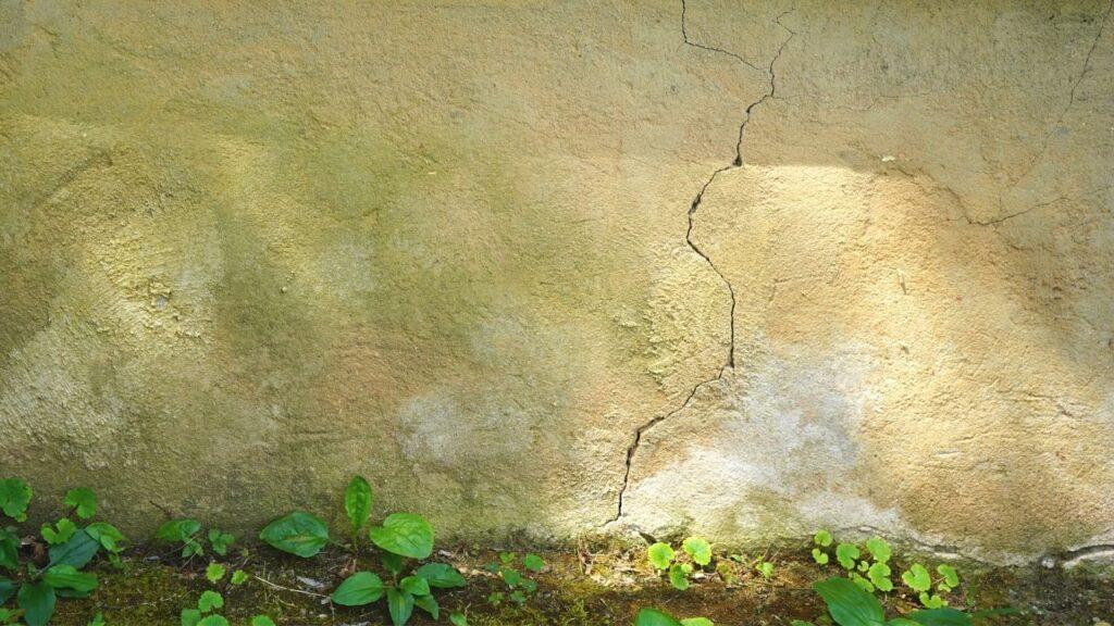 Keep Bugs Away Naturally Foundation Crack