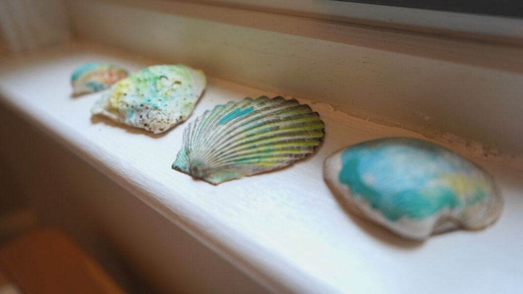 Water color shells