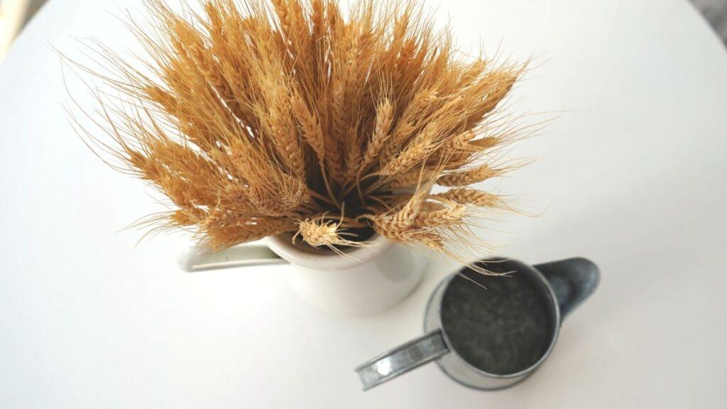Scandinavian Farmhouse Wheat pitchers